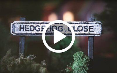 Hedgehog Close – Henry the Hedgegnome loves this video.