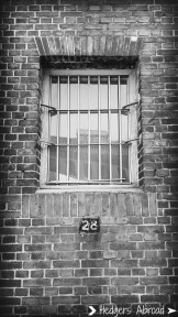 Cell #28