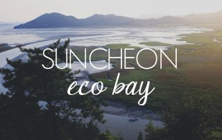 Suncheon Eco Bay // KOREA