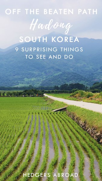 9 Surprising Things to Do and See // HADONG, SOUTH KOREA