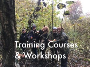 trainingcourses