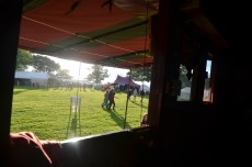 The view from our stable door at Green Gathering