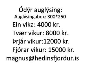 auglysingabox