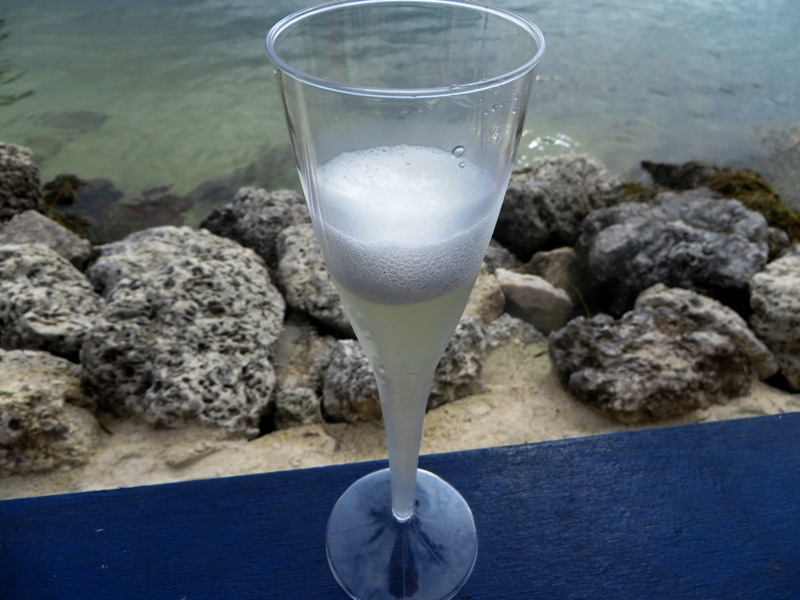 Key Largo Food and Wine Festival -Pelican Cove Resort - snappers champagne cocktail