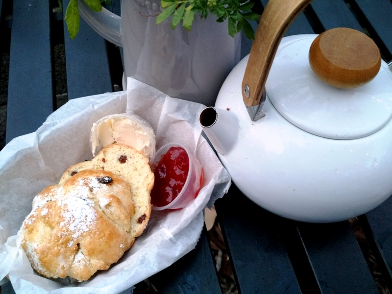 Wynwood Yard Summer Preview - scone - the british garden