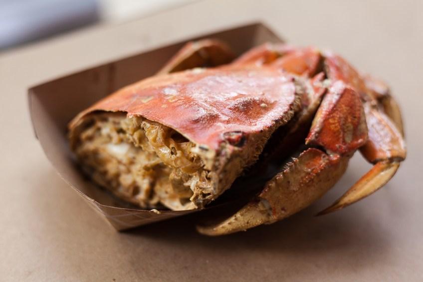Mad Boiler Crab