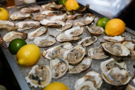 Toro Toro oysters