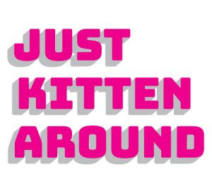 Just Kitten Around Comedy Fundraiser Chicago