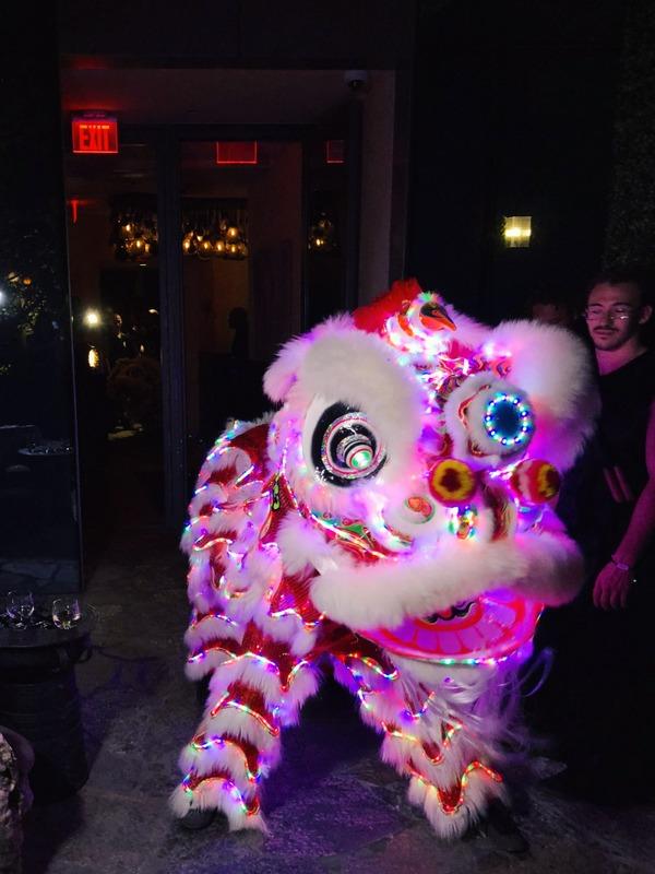 LED Lion Sugar Miami
