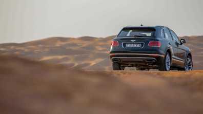 Bentley Bentayga Falconry