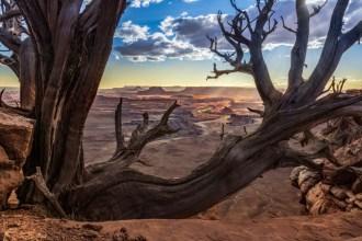 © Frank Bohrisch, Foto Reise Indianer Canyon