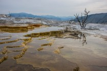 © Sandro Schmid, Yellowstone Foto Tour