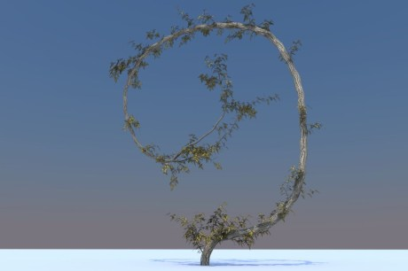cheetah3dtree2