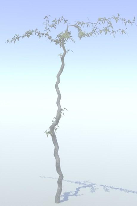 treeee