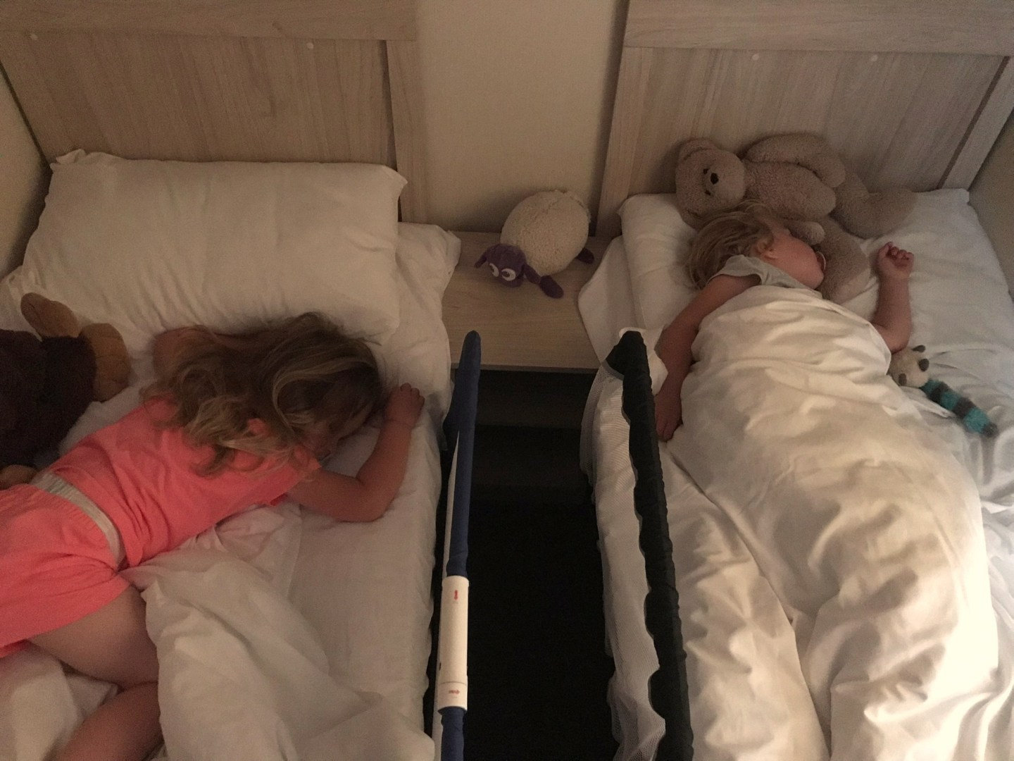 two little sisters sleeping next to each other in twin beds