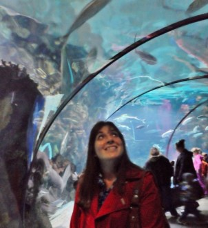 Henry Doorly Zoo and Aquarium viewing tunnel