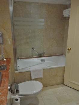 Intercontinental David Tel Aviv King Shower