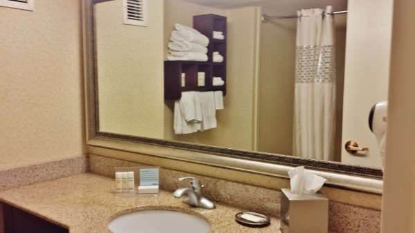 Hampton Inn Staunton Virginia Deluxe room bathroom