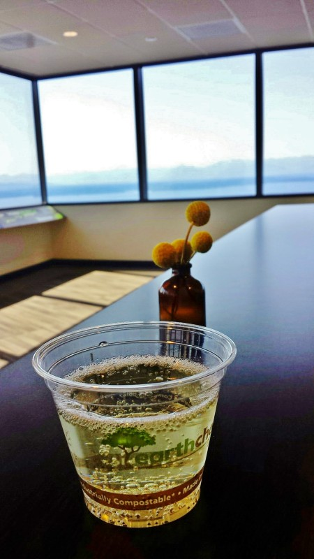 Sky View Observatory Columbia Center Seattle cava with view