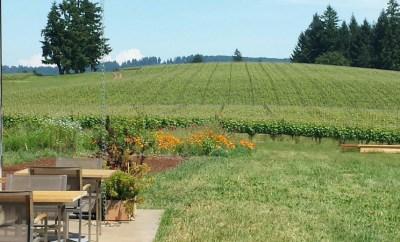 Soter Vineyards Willamette Valley
