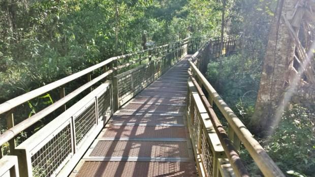 Iguazu Falls Lower Circuit Trail pathway