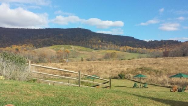 Glen Manor Vineyards fall scenery