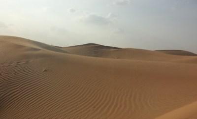 Al Maha sand dune nature drive