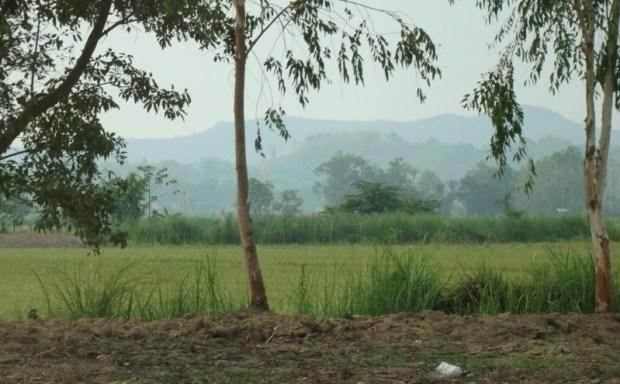 Chiang Rai Golden Triangle scenery
