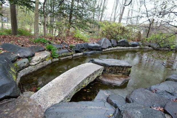 National Arboretum DC azalea goldfish pond