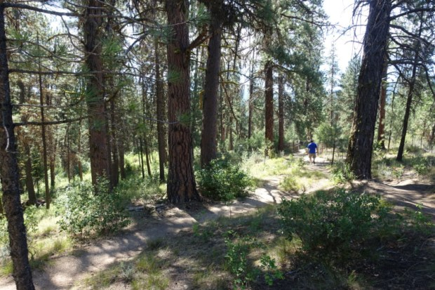 Idaho City Pioneer Cemetery Boot Hill trails