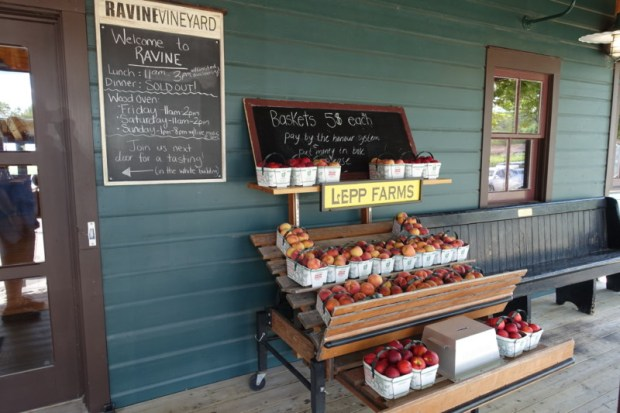 ravine-vineyard-restaurant-porch-wine-tasting-niagara