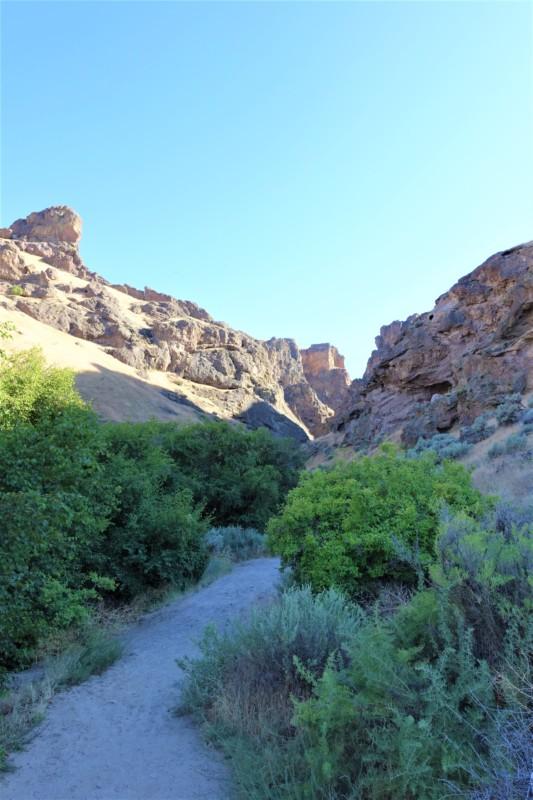 jump-creek-falls-trails-owhyee-id