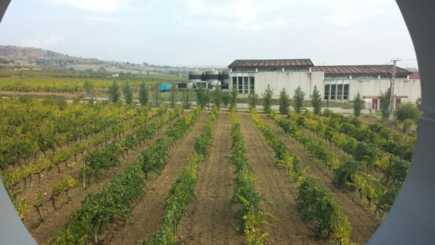 hotel-mastinell-vilafranca-del-penedes-room-view