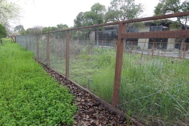 Calicraft Walnut Grove Brewery Hop Garden