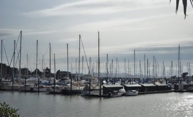 Doubletree Berkeley Marina Hotel Review view