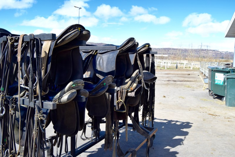 Saddles at Eldhestar Horse Farm