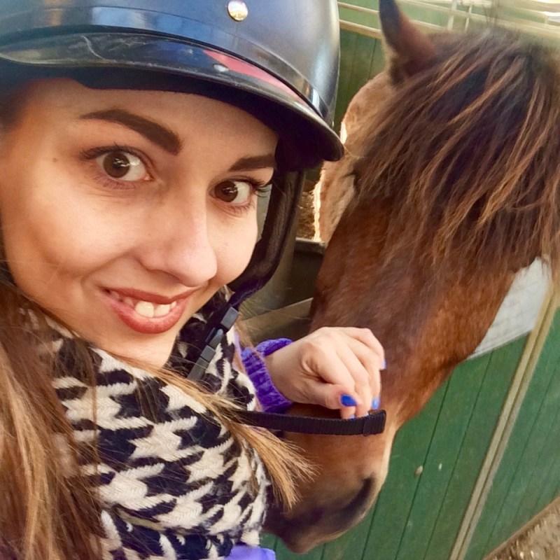 My new horse pal at Elhestar, Iceland
