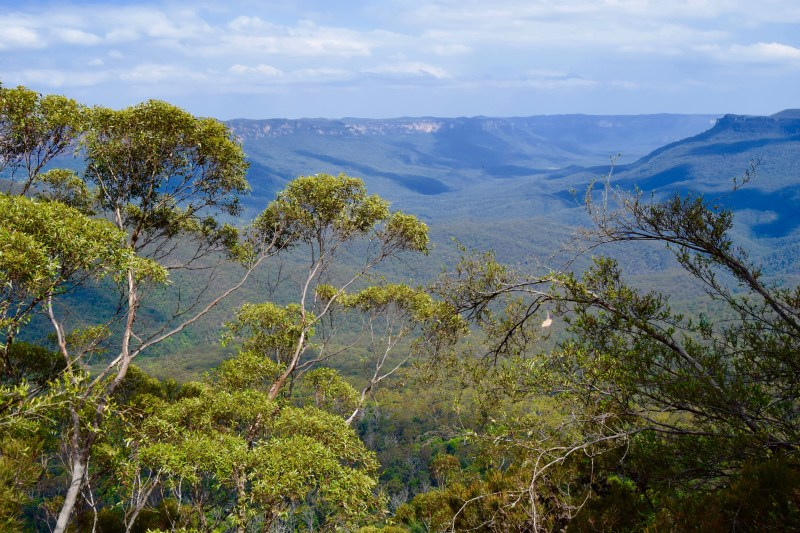 Exploring The Blue Mountains On A Budget Sydney Heels