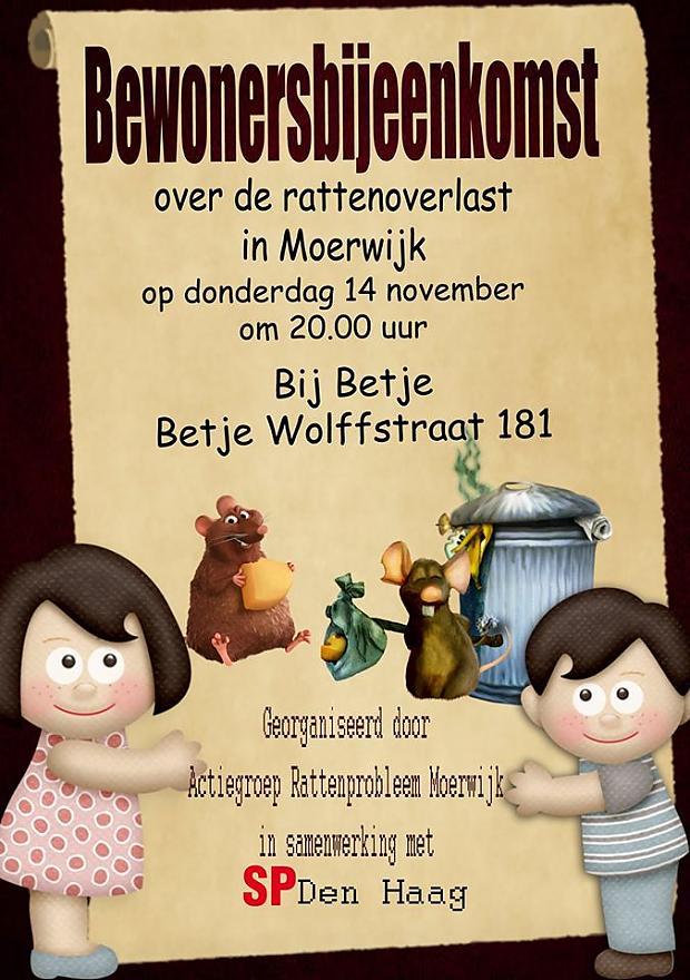 Rattenprobleem Moerwijk Bijeenkomst Bij Betje Moerwijk Coöperatie SP Rattenoffensief