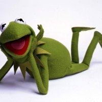Hi Ho! Kermit the Frog's House for Sale Here!