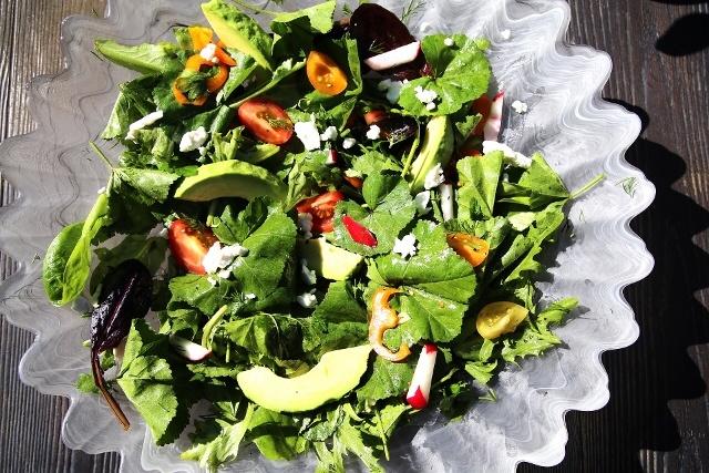 Malva Mallow Salad Recipe - Փիփերթ