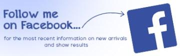 FB-follow (3)