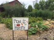 edible-schoolyard-garden-row-for-hungry