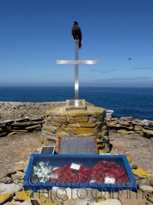 Caracara on HMS Sheffield memorial, Sealion Island, Falkland Islands