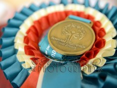 17th July 2013 - Special Olympics Great Britain Equestrian