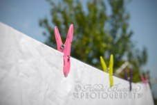21st August 2013 - washing day!