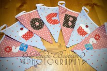 23rd November 2013 -The finished bunting!