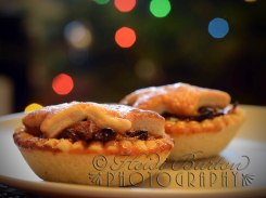 29th December 2013 - mmmmmmmince pies.... Copyright Heidi Burton ABIPP. No use without the prior consent of the photographer.