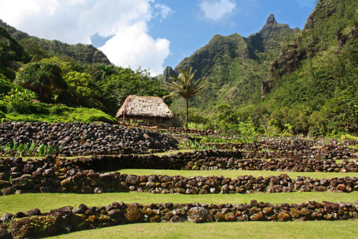 Limahuli Garden and Preserve is set in a verdant tropical valley on the north shore of the Hawaiian Island of Kaua`i. Against a backdrop of majestic Mt. Makana, the garden overlooks the Pacific Ocean. Photo: Courtesy National Tropical Botanical Garden.