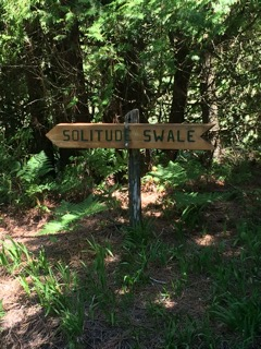 Solitude Swale
